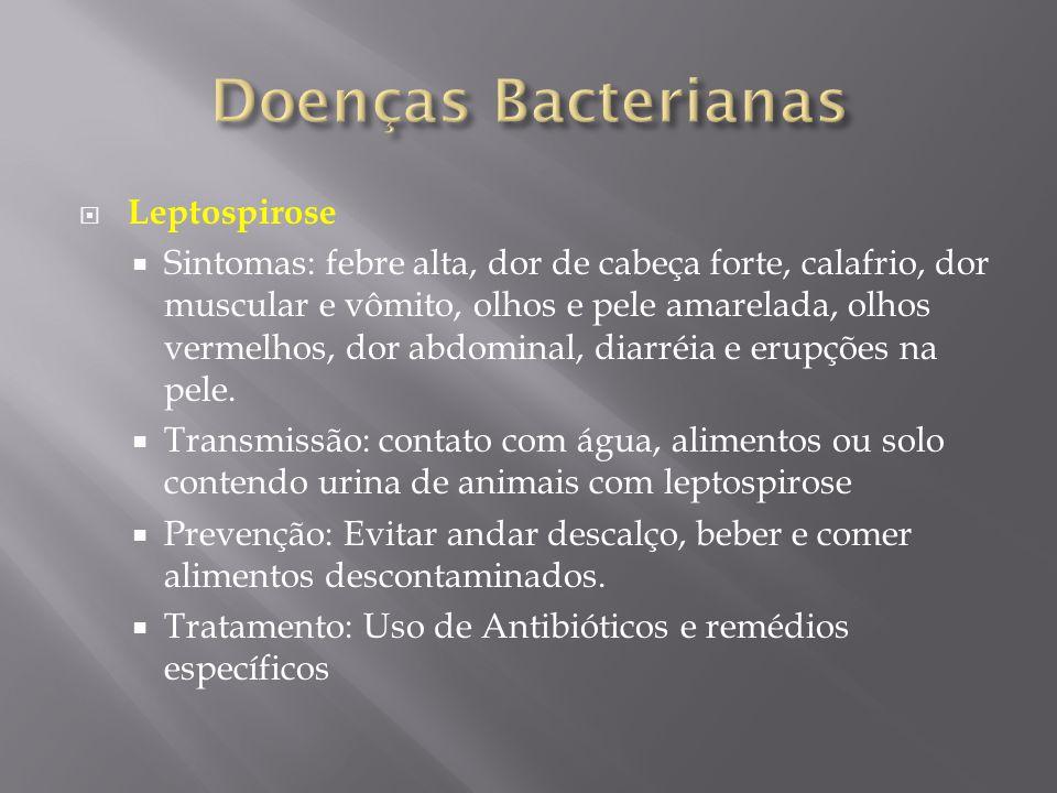 Doenças Bacterianas Leptospirose