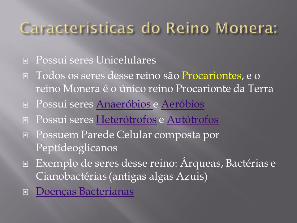 Características do Reino Monera:
