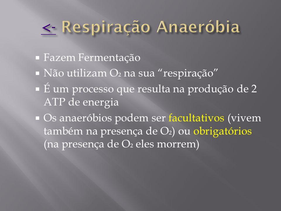 <- Respiração Anaeróbia