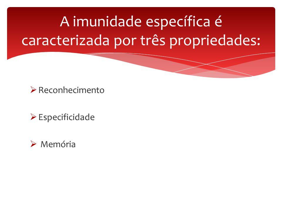 A imunidade específica é caracterizada por três propriedades: