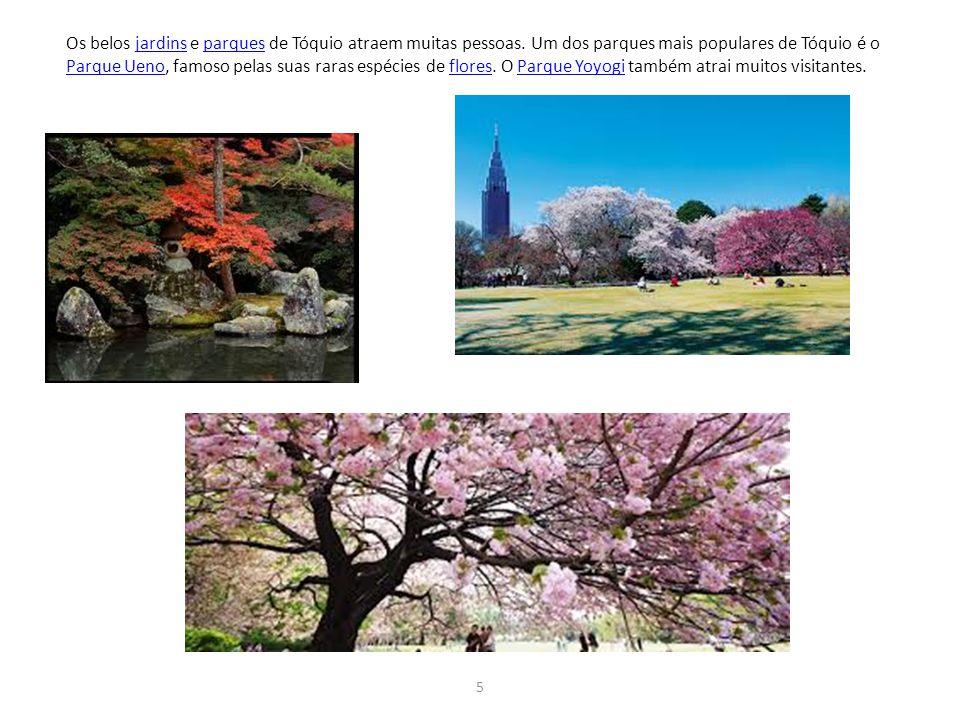 Os belos jardins e parques de Tóquio atraem muitas pessoas