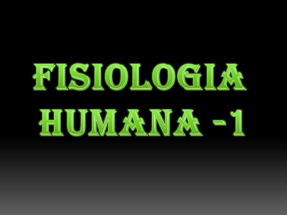 FISIOLOGIA humanA -1