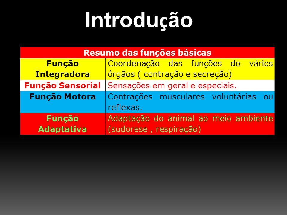Resumo das funções básicas