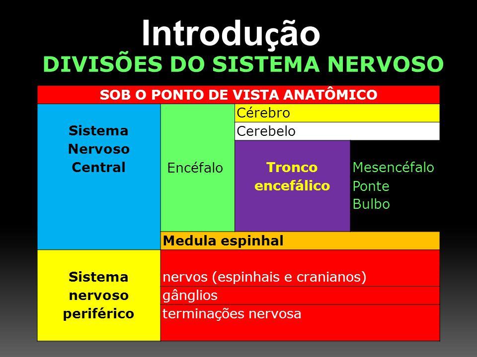 Introdução DIVISÕES DO SISTEMA NERVOSO SOB O PONTO DE VISTA ANATÔMICO