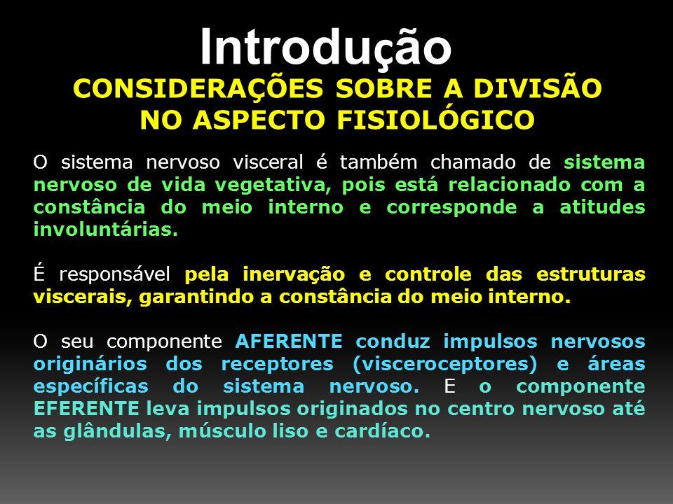 CONSIDERAÇÕES SOBRE A DIVISÃO NO ASPECTO FISIOLÓGICO