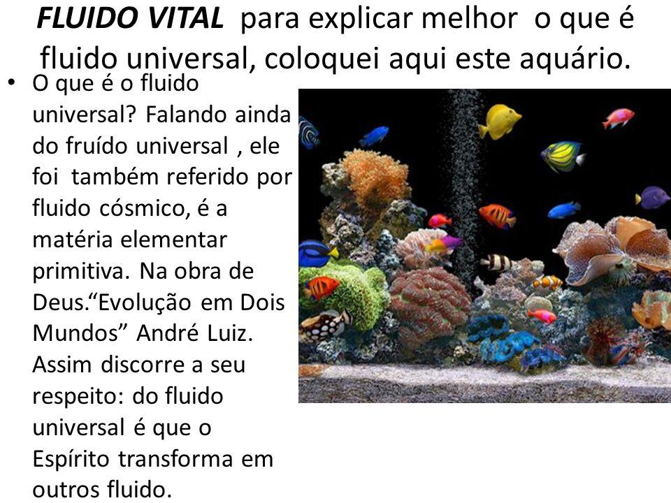 FLUIDO VITAL para explicar melhor o que é fluido universal, coloquei aqui este aquário.