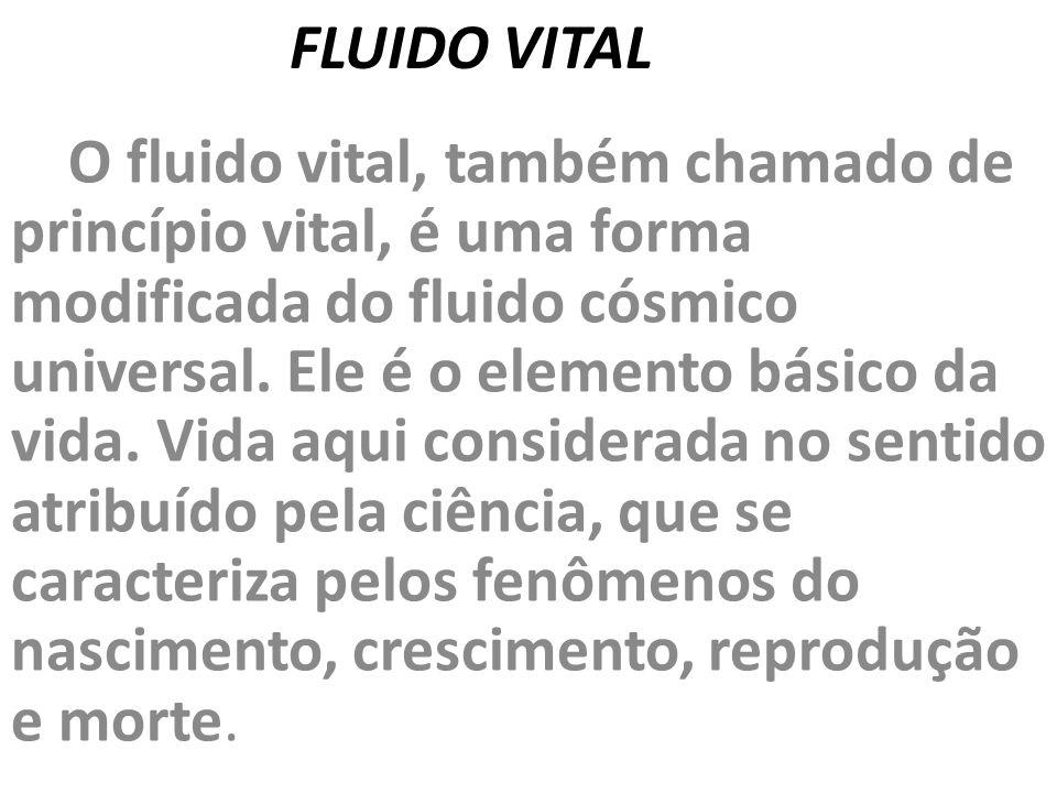 FLUIDO VITAL
