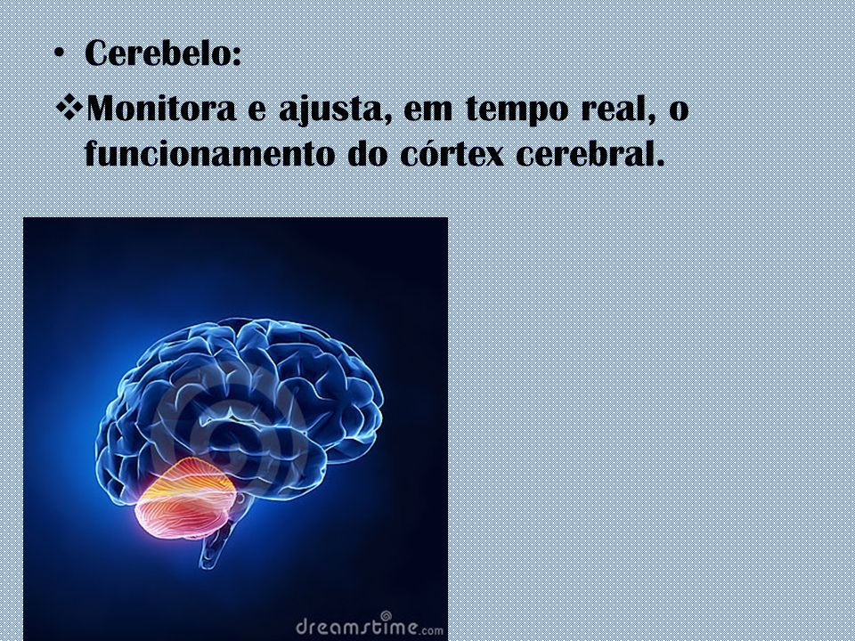 Cerebelo: Monitora e ajusta, em tempo real, o funcionamento do córtex cerebral.