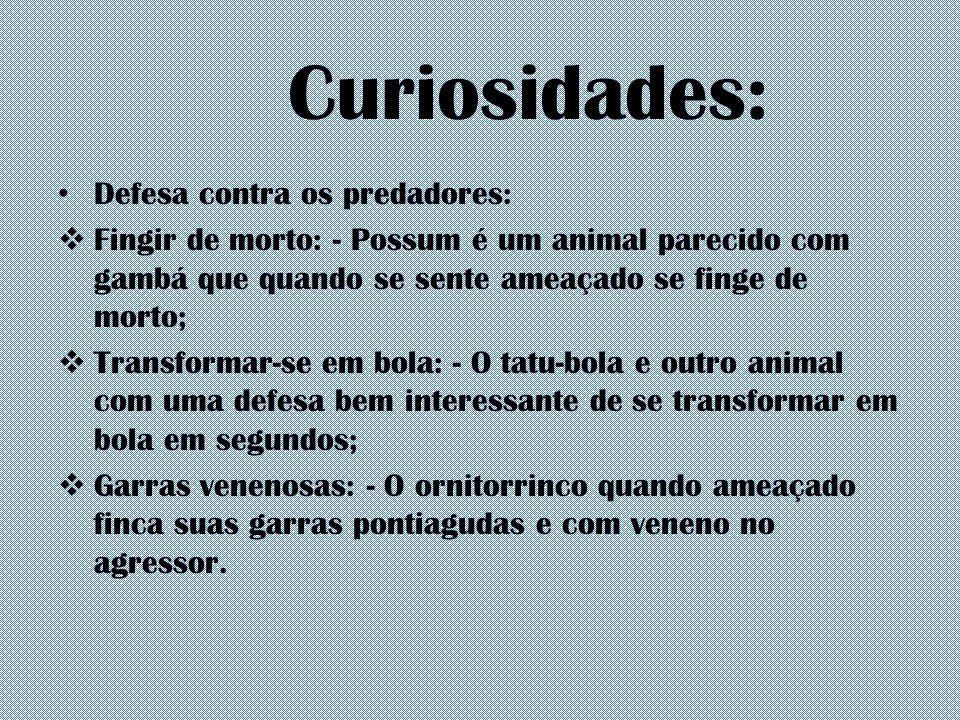 Curiosidades: Defesa contra os predadores: