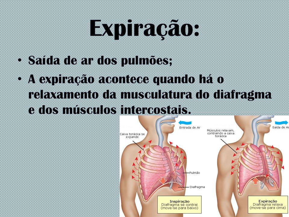 Expiração: Saída de ar dos pulmões;