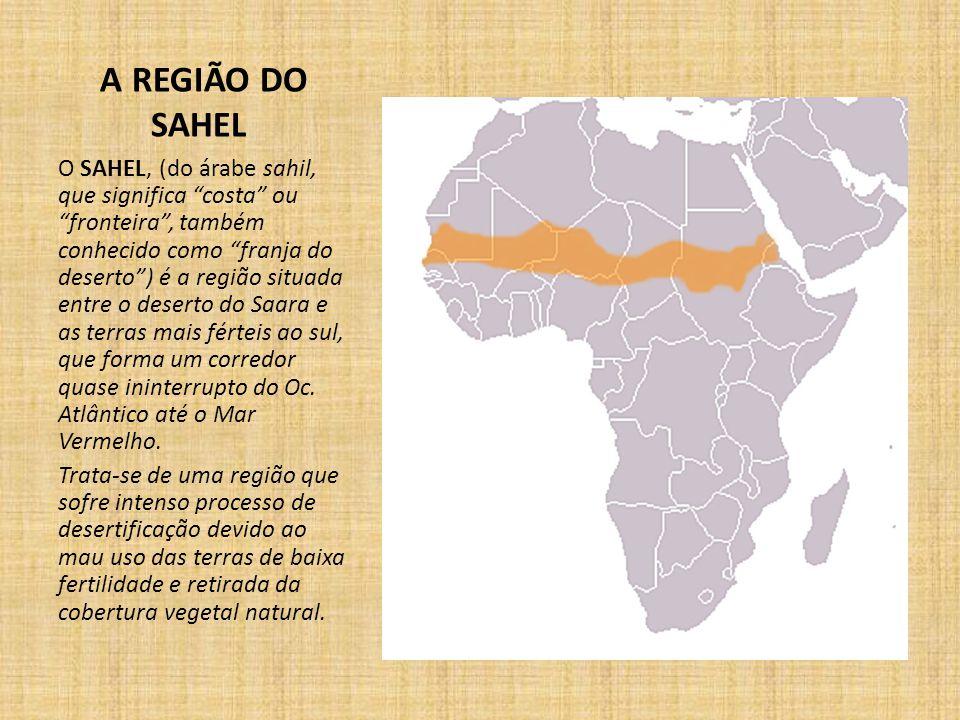 A REGIÃO DO SAHEL