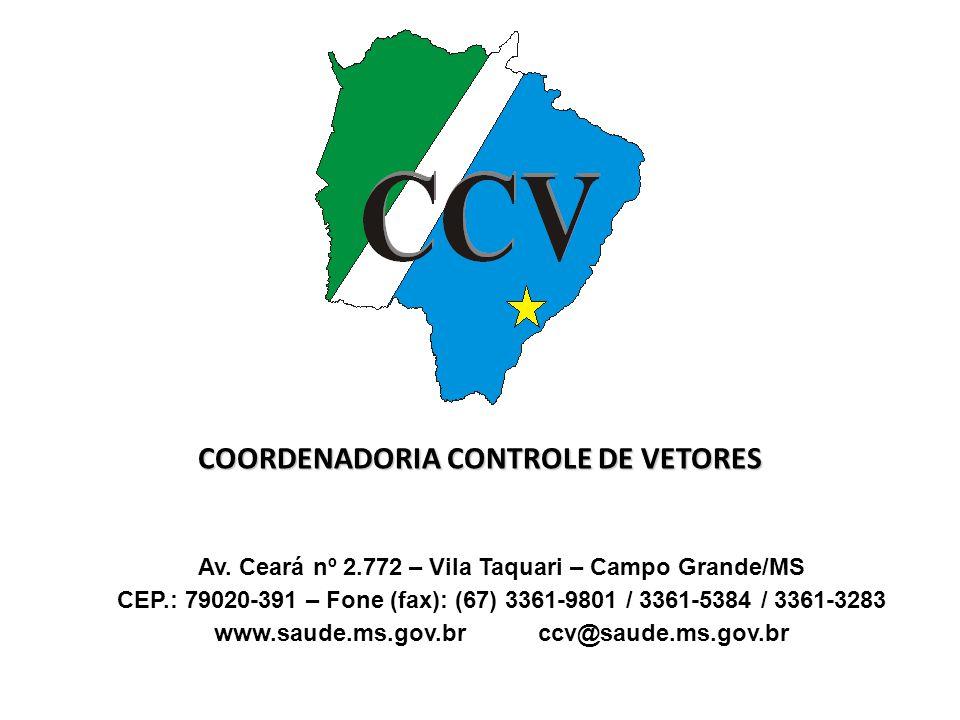 COORDENADORIA CONTROLE DE VETORES