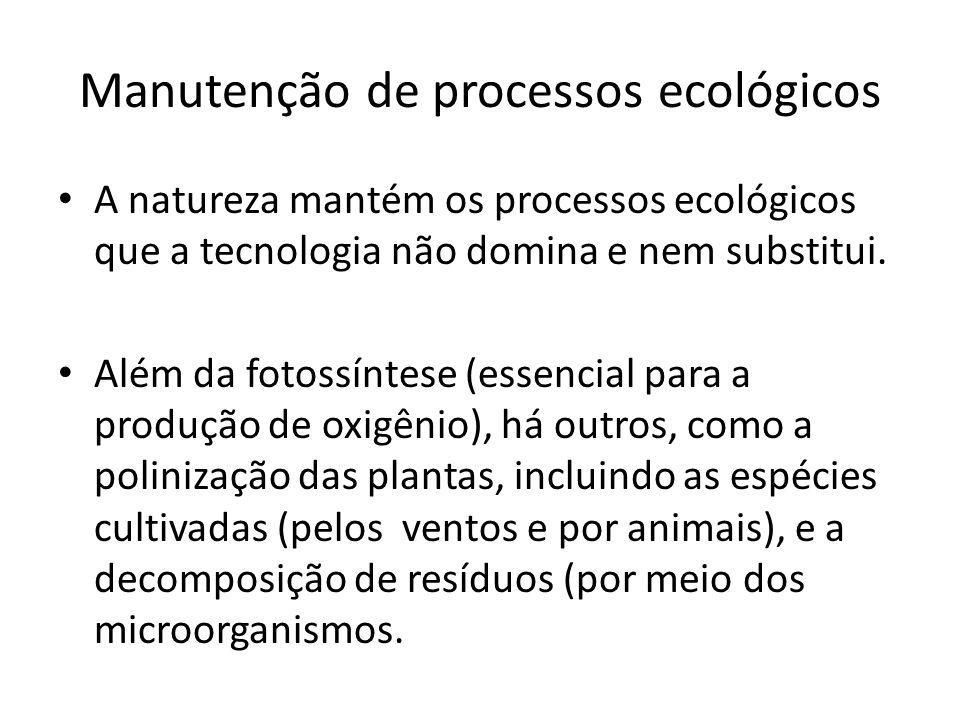 Manutenção de processos ecológicos