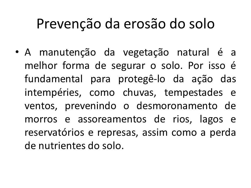 Prevenção da erosão do solo