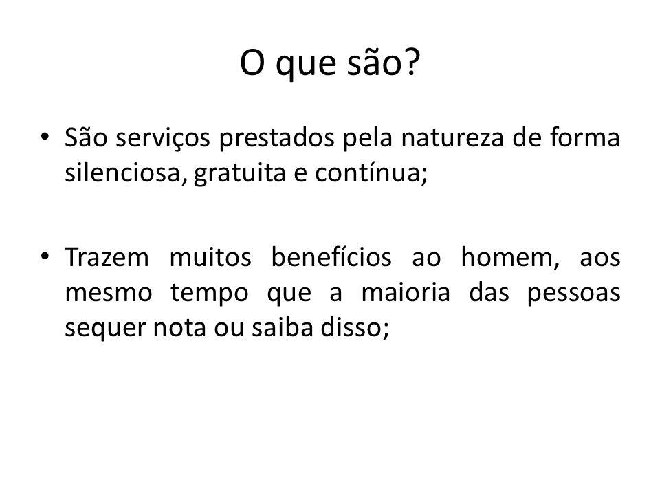 O que são São serviços prestados pela natureza de forma silenciosa, gratuita e contínua;