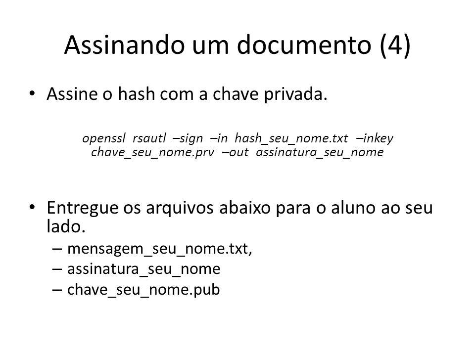 Assinando um documento (4)