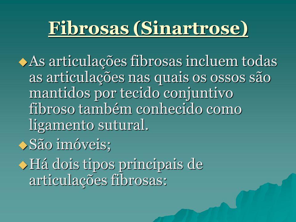 Fibrosas (Sinartrose)