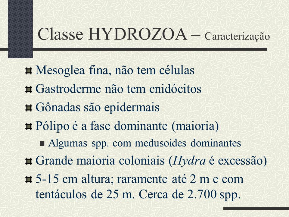 Classe HYDROZOA – Caracterização