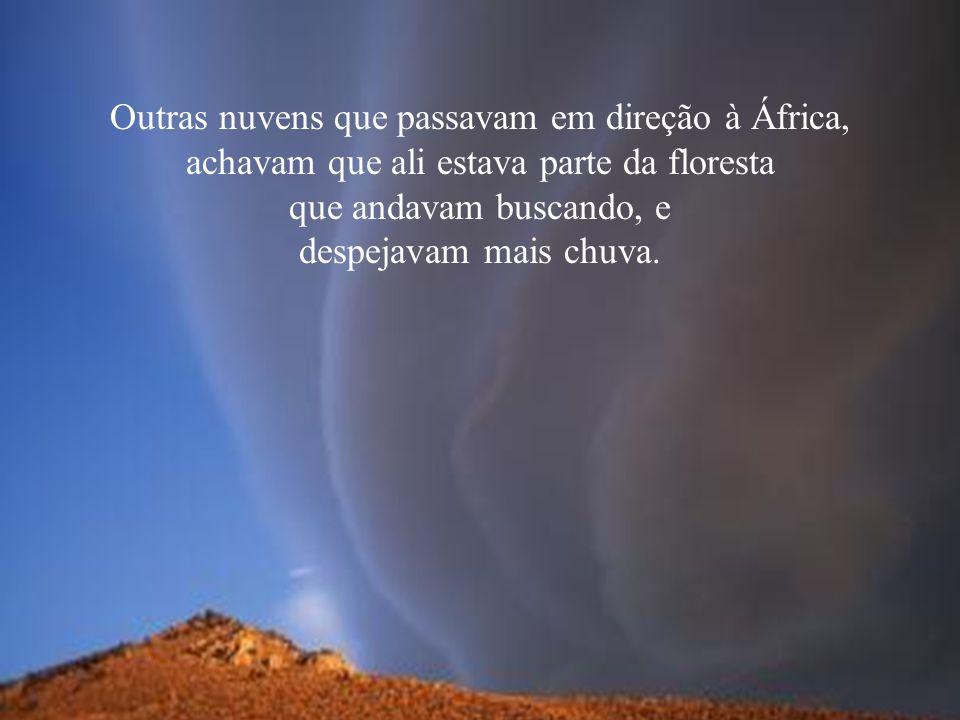 Outras nuvens que passavam em direção à África, achavam que ali estava parte da floresta que andavam buscando, e despejavam mais chuva.