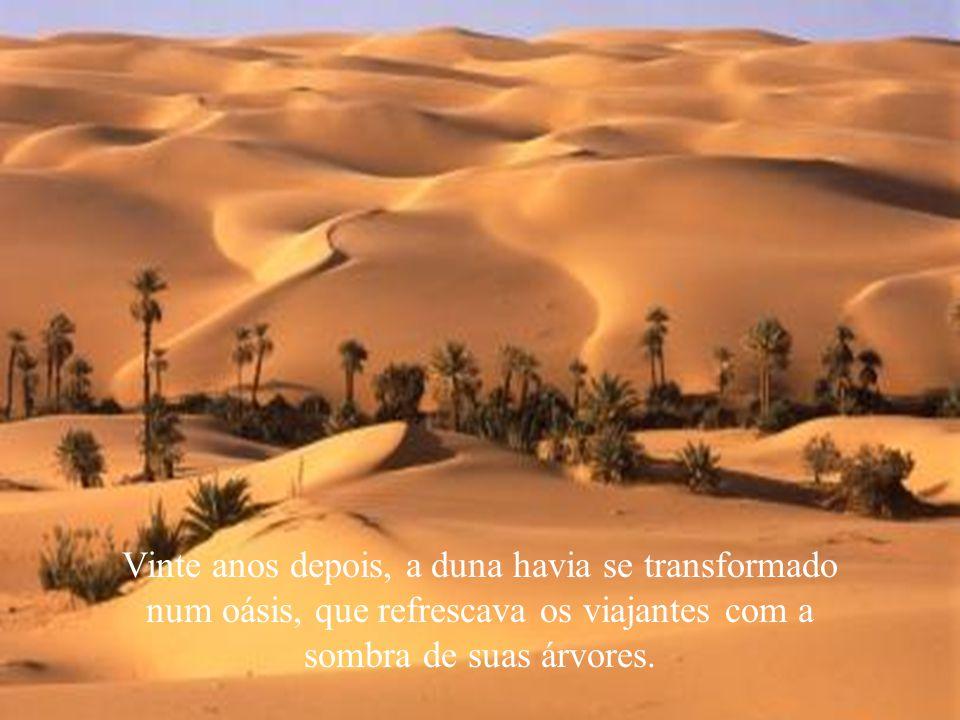 Vinte anos depois, a duna havia se transformado num oásis, que refrescava os viajantes com a sombra de suas árvores.