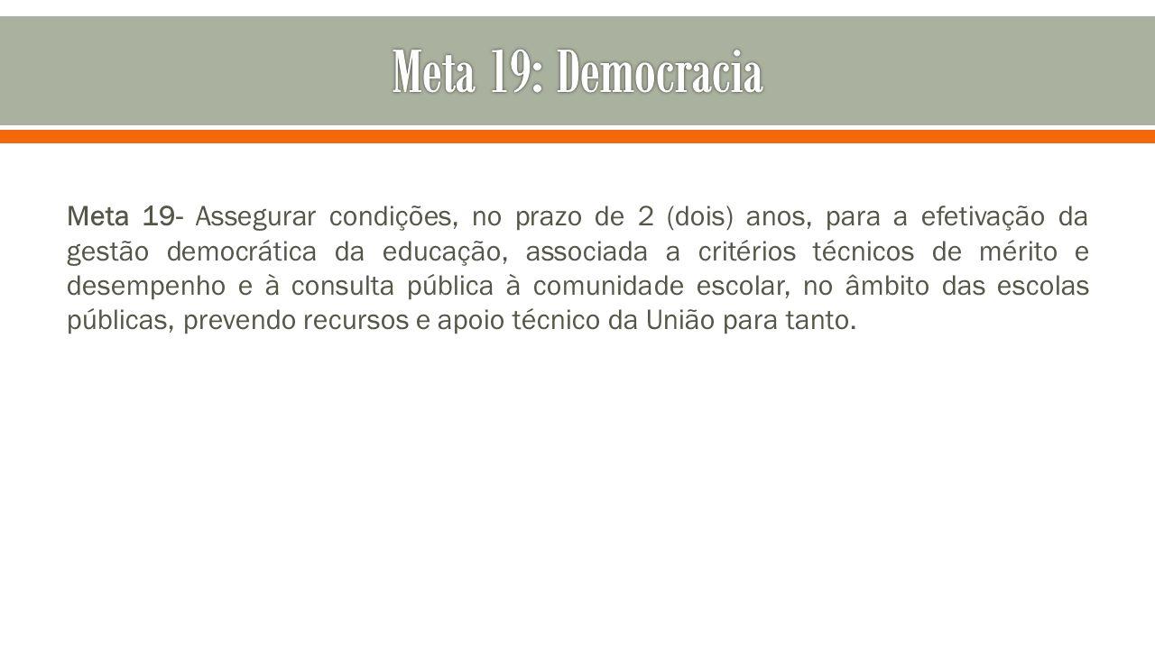 Meta 19: Democracia