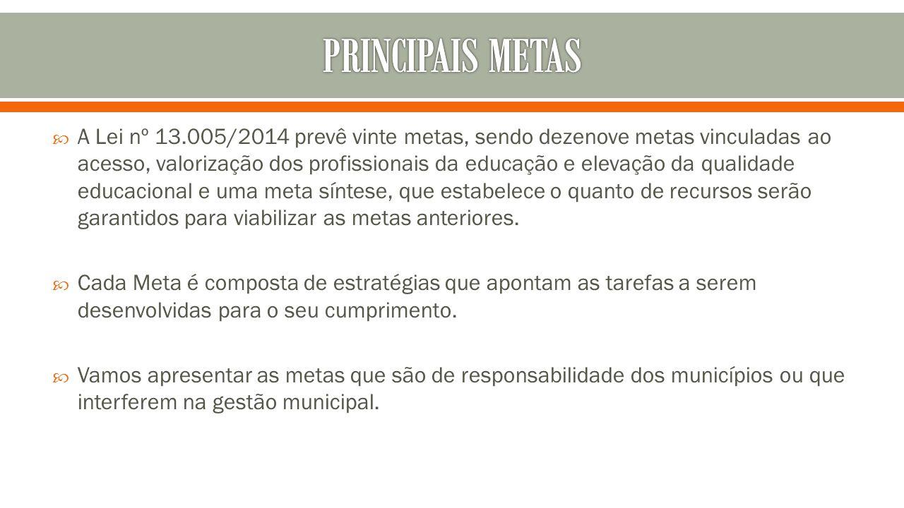 PRINCIPAIS METAS