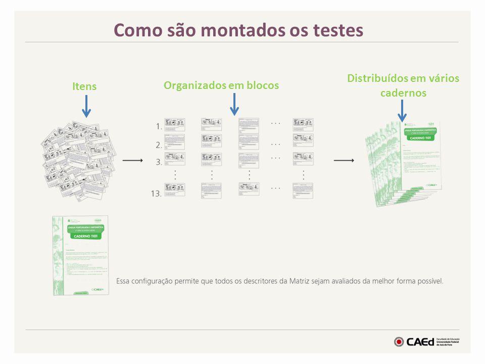 Como são montados os testes Distribuídos em vários