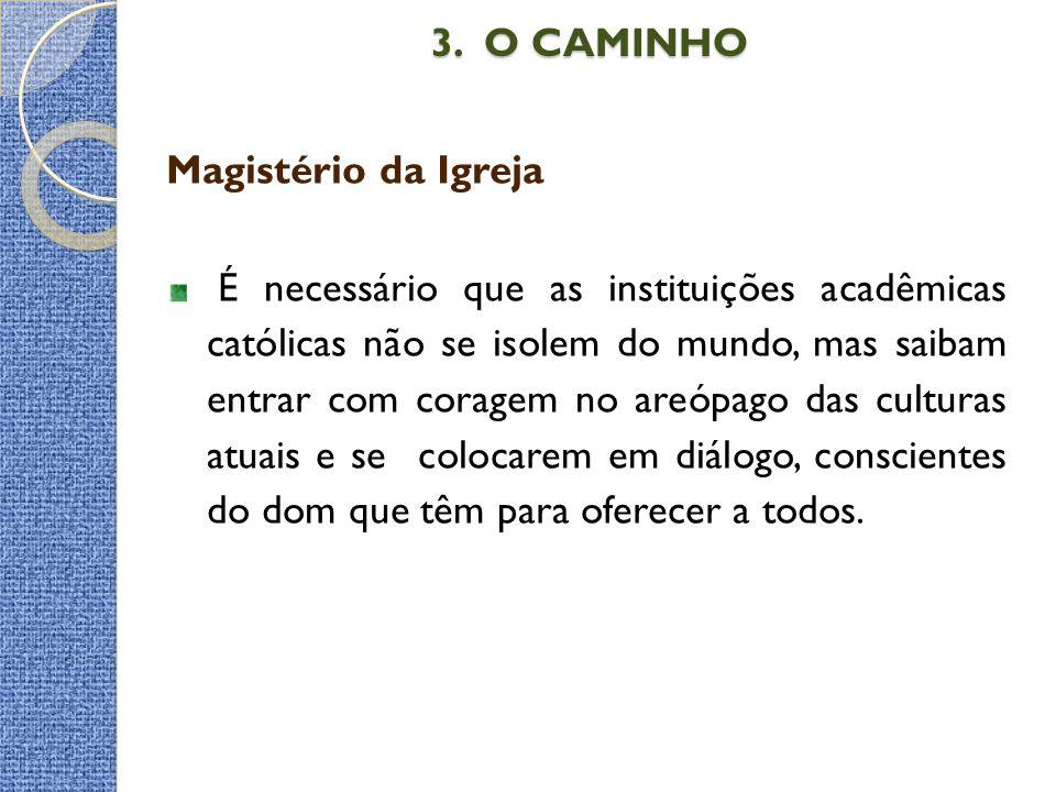 3. O CAMINHO Magistério da Igreja
