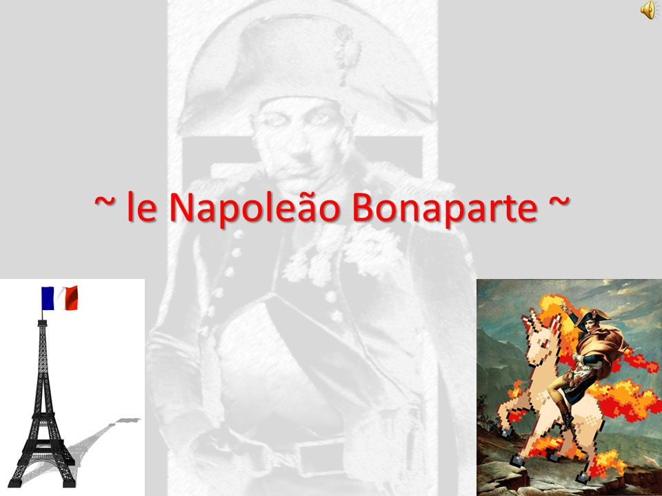 ~ le Napoleão Bonaparte ~
