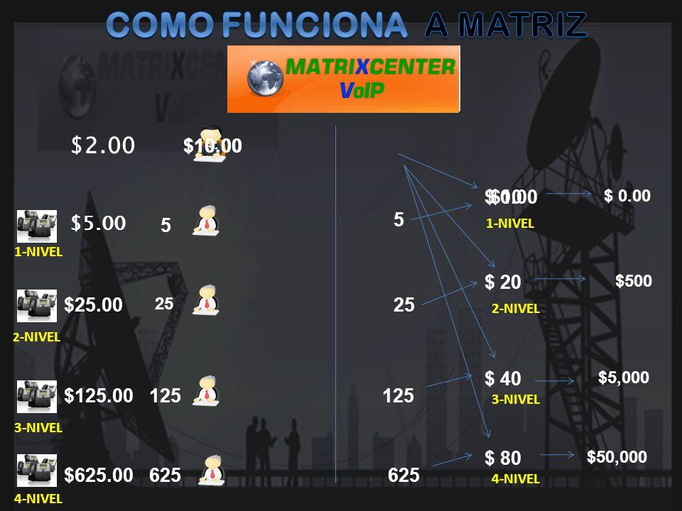 COMO FUNCIONA A MATRIZ $2.00 $10.00 $10.00 $10.00 $10.00 $ 0.00 $10 5