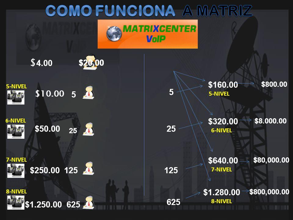 COMO FUNCIONA A MATRIZ $4.00 $20.00 $20.00 $20.00 $20.00 $160.00 5