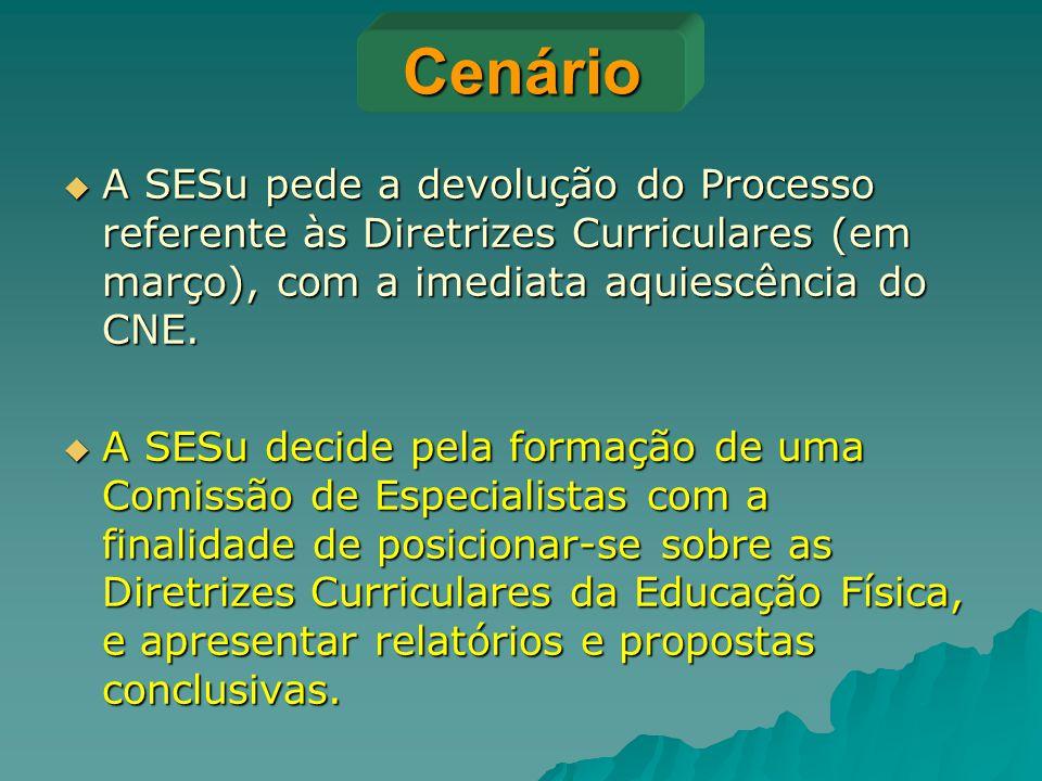 Cenário A SESu pede a devolução do Processo referente às Diretrizes Curriculares (em março), com a imediata aquiescência do CNE.
