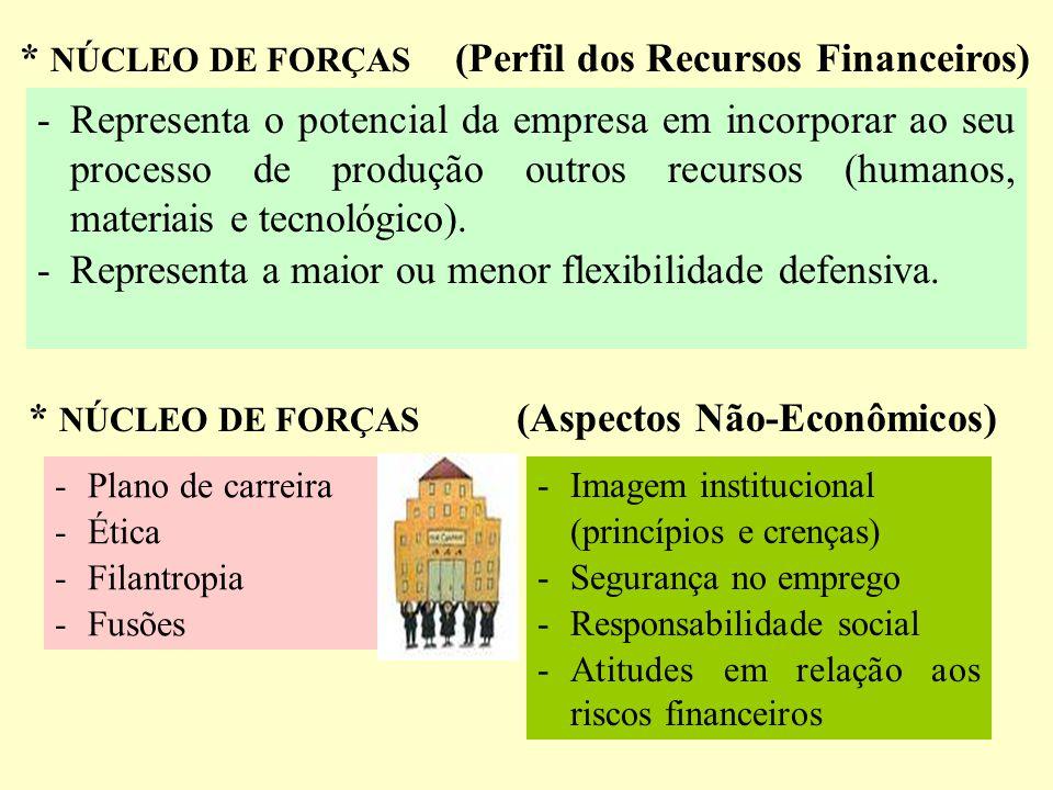 * NÚCLEO DE FORÇAS (Perfil dos Recursos Financeiros)
