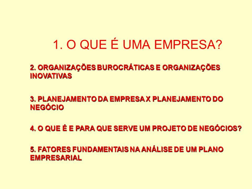 1. O QUE É UMA EMPRESA 2. ORGANIZAÇÕES BUROCRÁTICAS E ORGANIZAÇÕES INOVATIVAS. 3. PLANEJAMENTO DA EMPRESA X PLANEJAMENTO DO NEGÓCIO.
