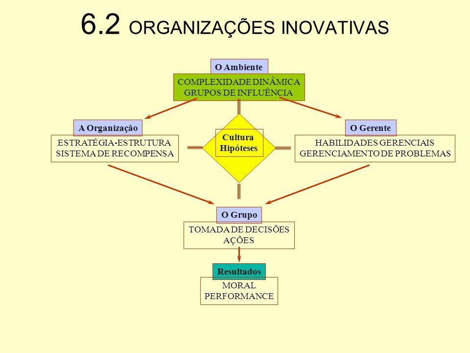 6.2 ORGANIZAÇÕES INOVATIVAS