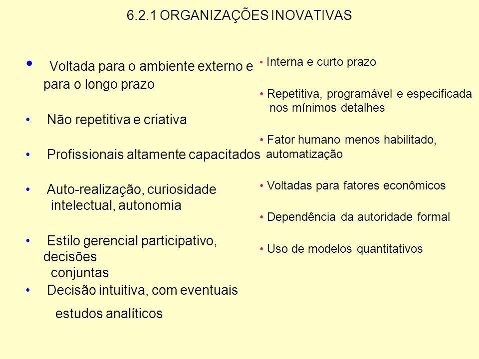6.2.1 ORGANIZAÇÕES INOVATIVAS