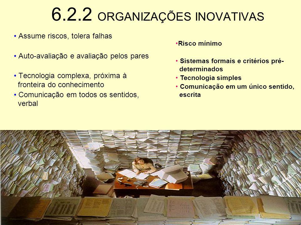 6.2.2 ORGANIZAÇÕES INOVATIVAS