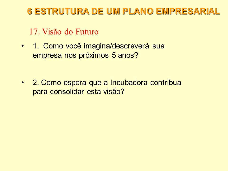 17. Visão do Futuro 6 ESTRUTURA DE UM PLANO EMPRESARIAL
