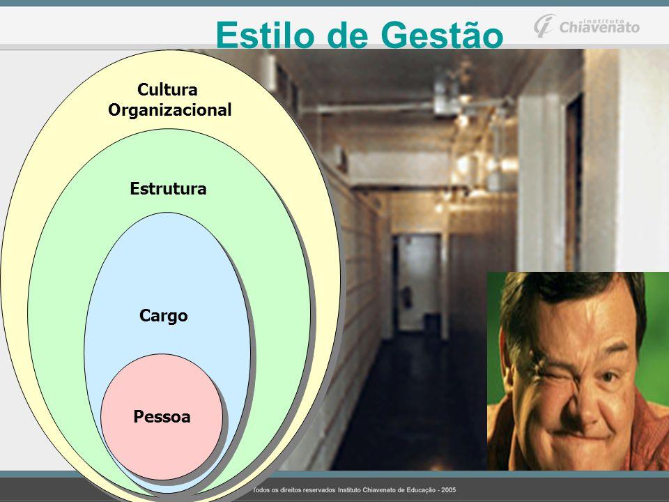 Estilo de Gestão Cultura Organizacional Estrutura Cargo Pessoa 216