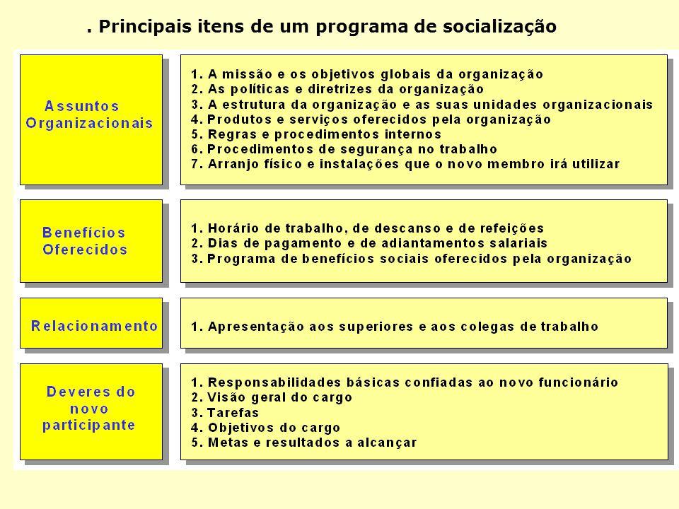. Principais itens de um programa de socialização