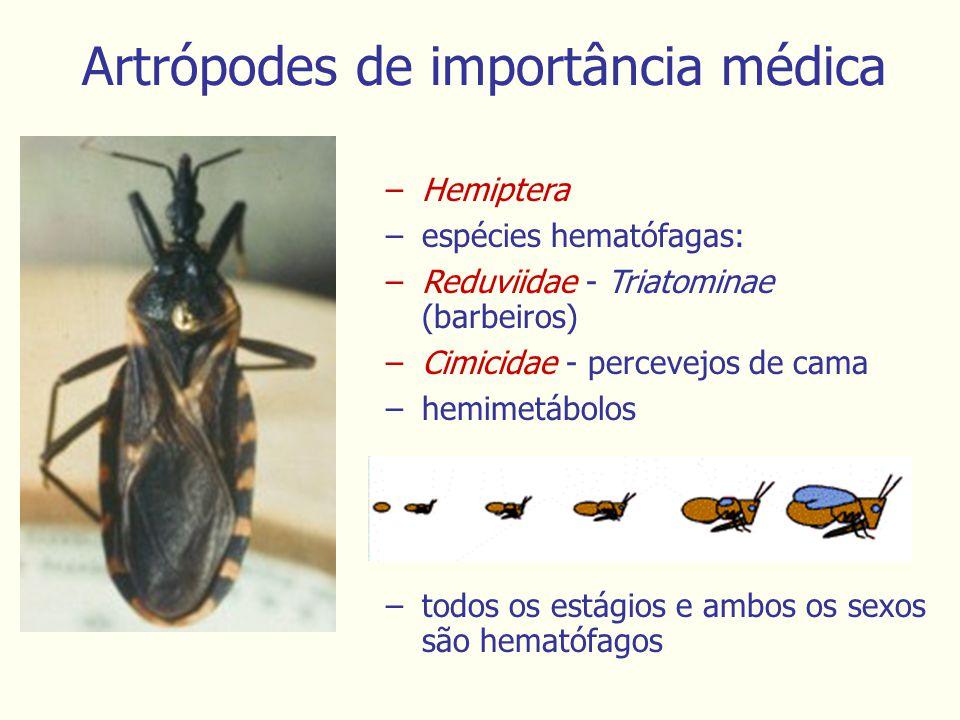 Artrópodes de importância médica