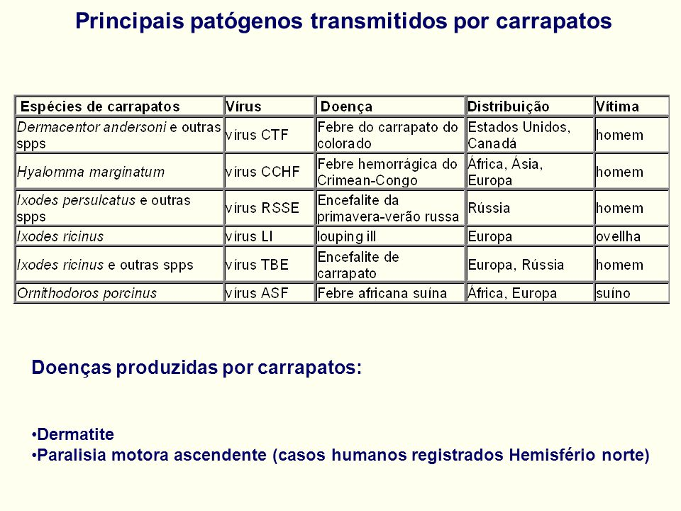 Principais patógenos transmitidos por carrapatos