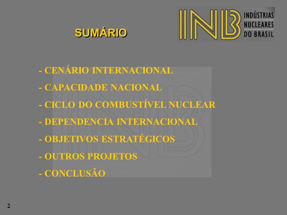 SUMÁRIO - CENÁRIO INTERNACIONAL - CAPACIDADE NACIONAL