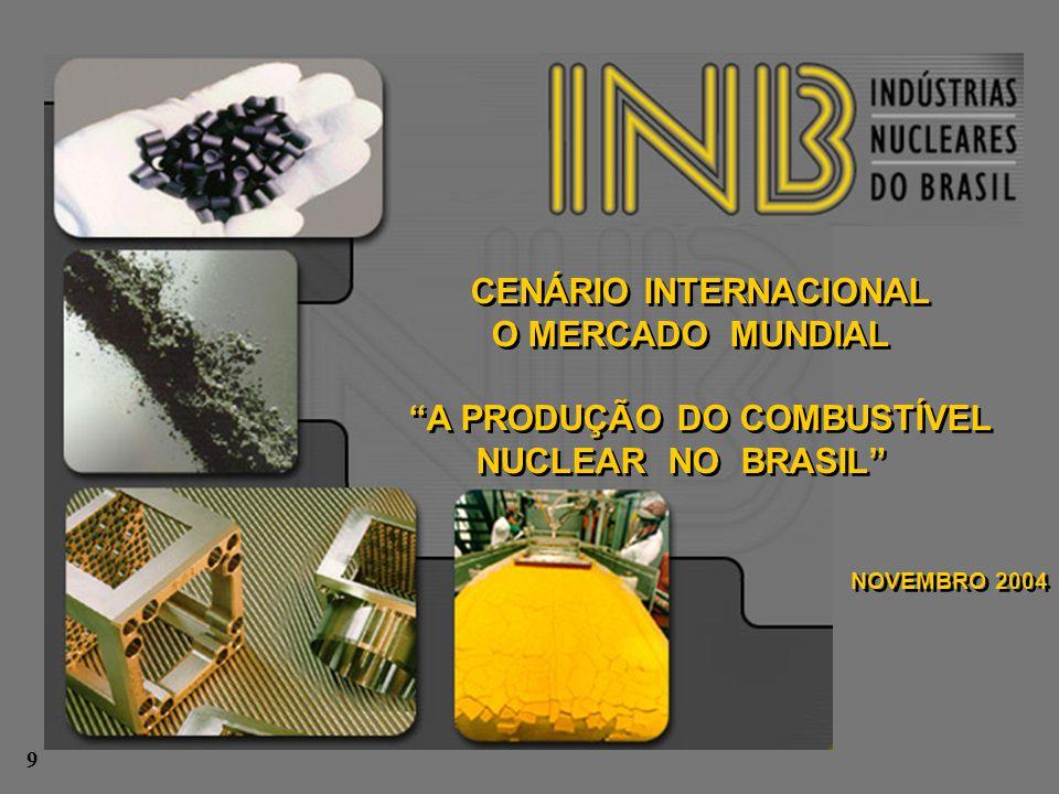 CENÁRIO INTERNACIONAL A PRODUÇÃO DO COMBUSTÍVEL NUCLEAR NO BRASIL