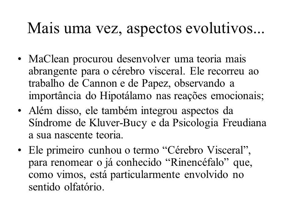 Mais uma vez, aspectos evolutivos...