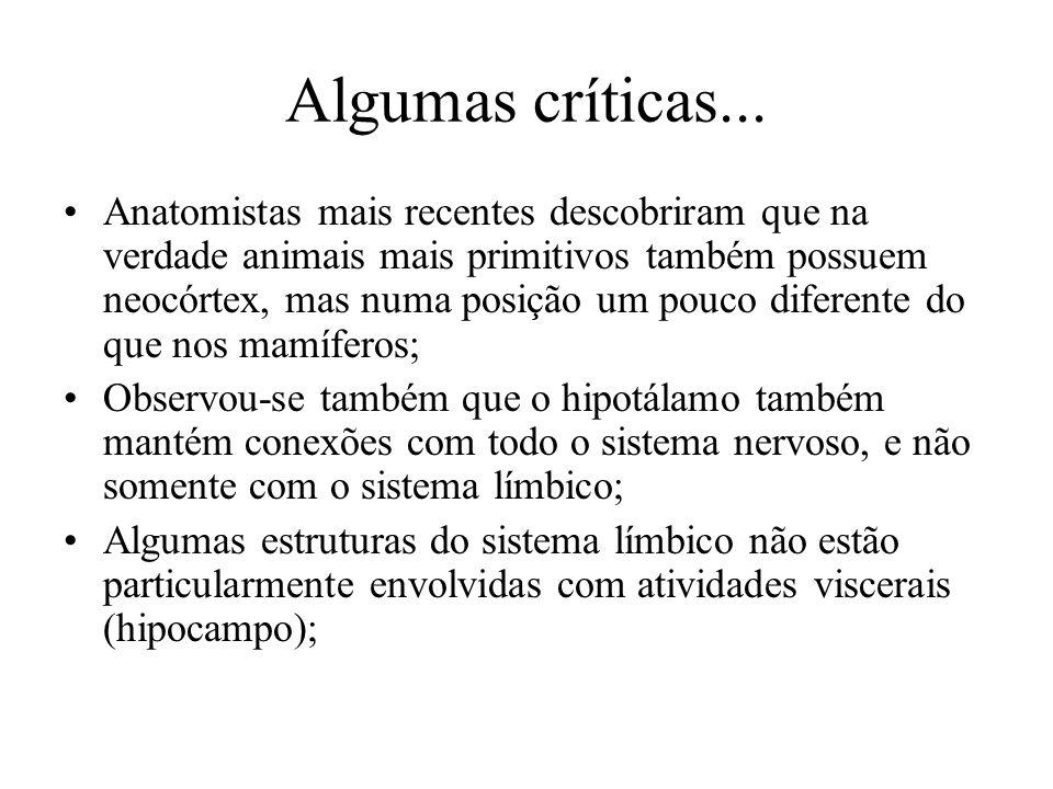 Algumas críticas...