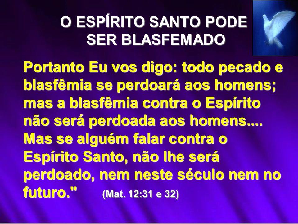 O ESPÍRITO SANTO PODE SER BLASFEMADO.