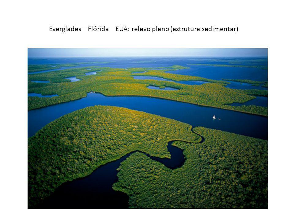 Everglades – Flórida – EUA: relevo plano (estrutura sedimentar)