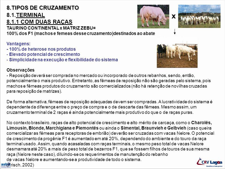 x 8.TIPOS DE CRUZAMENTO 8.1.TERMINAL 8.1.1 COM DUAS RAÇAS