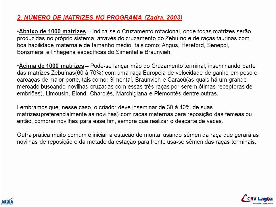 2. NÚMERO DE MATRIZES NO PROGRAMA (Zadra, 2003)